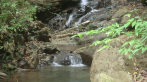 Natural pool in the middle section of 150 foot horsetail waterfall